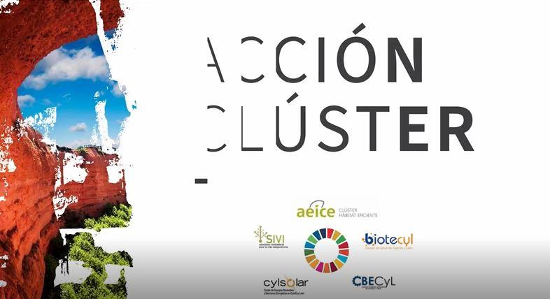Acción cluster